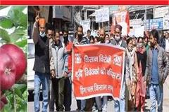 hp kisan sabha protests against agricultural laws demands msp on apple