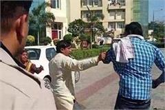 son in law wreaks havoc on mother in law and brother in law