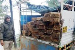 38 cedar sleepers recovered from jeep 3 absconding from the spot