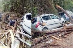 pine tree fell on nh 154 3 vehicles damaged