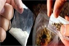 anti narcotics cell team arrested youth with narcotics