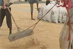 proceeding on strike across the state wheat procurement affected
