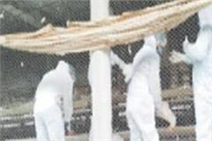 bird flu threat in this district of punjab