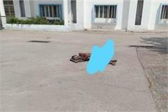 dead body of unknown man lying in district hospital