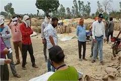 cheating with farmers at baihar s wheat procurement center