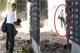 man steals pot from vertical garden