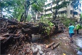 three killed in maharashtra due to cyclone nature rain in parts of north india