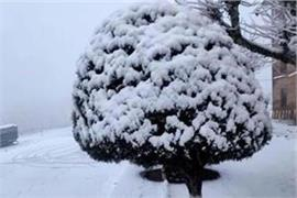 outbreak of cold in punjab