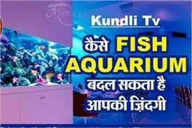 kundli tv aquarium