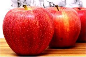 j k and pinjore s apple to be stored in pinjore