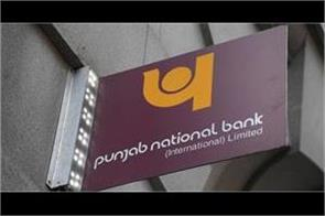 pnb s profit up 7 1  npa decreases