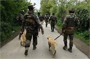 search operation in kashmir pulwama