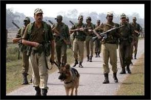 search operation in sopore by security forces
