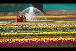 tulip garden will close from 28 april
