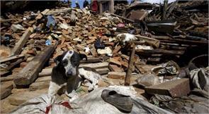 earthquakes german biologist ulrich schreiber dogs