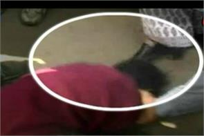 minister kusum mehdele caught on camera kicking teenager on head
