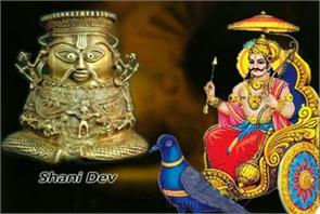shani bhadra astrology
