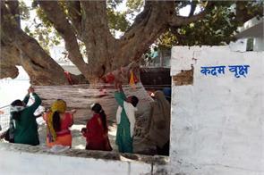 kadam become pilgrimage tree