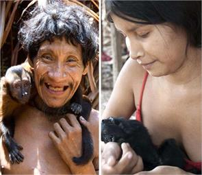 the amazon tribe breastfeed the animals