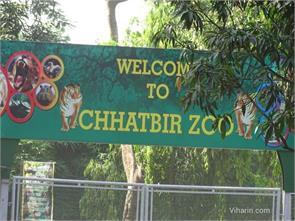 chhatbir zoo ticket countern will upgrade