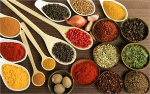 india spices dollar