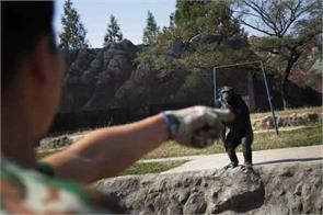 chimpanzee who smoke pack of cigarettes every day in north korea zoo