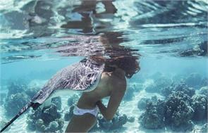 stingray queen rava ray dives naked marine creatures tahiti hawaii