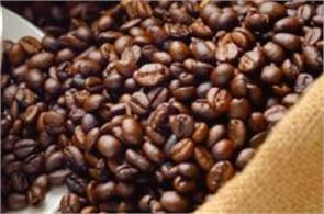 coffee exports up 18 6 pc to 2 14 lakh tonnes in apr oct