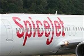 monkey stopped spice jet aeroplan