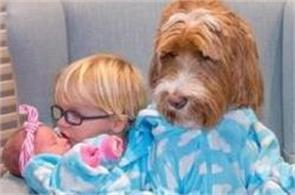 boy dog friendship pictures viral on social media