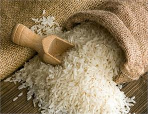 india became king of rice exports