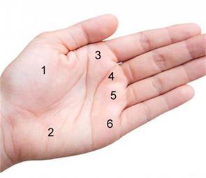 palm astrology