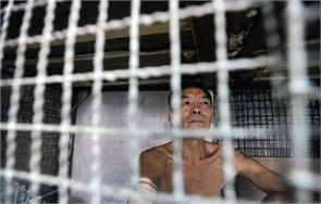 hongkongs caged dogs poverty stricken people forced live like animals