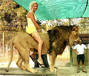 they do not feel afraid of lions riding the fear