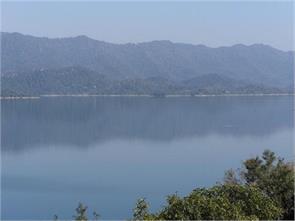 bhakra dam gobind sagar lake fish