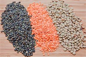 goverment import pulses
