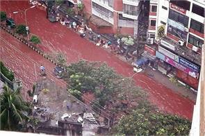 eid blood dhaka islam animal