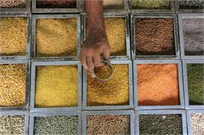 msp lentils