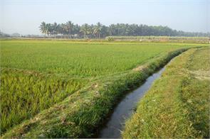 sufficient fertiliser seeds to meet rabi demand govt