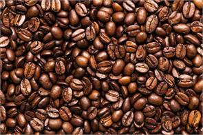 coffee board india