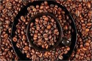 india coffee production record is estimated to be 3 5 lakh tonnes