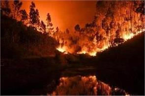 at least 31 killed in portugal and  spain as wildfires