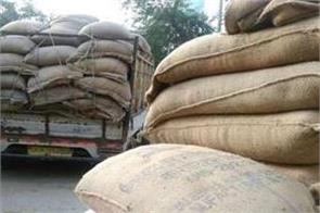 punjab mandi board closed paddy purchase in rural areas