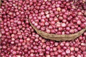 prices on onion will again revive deepawali