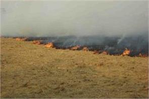 punjab government is disturbed farmers in the name of parali burning