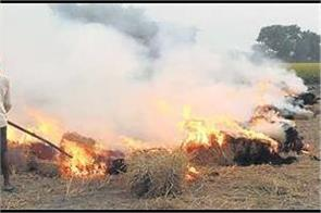 104 stuble burning case registered in punjab