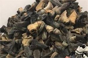 australia  a man accused of stealing 2300 pairs of footwear
