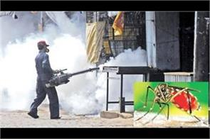 administration and health department fail to stop dengue sting