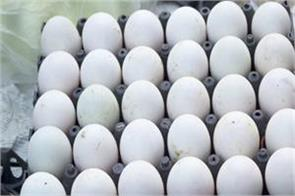 egg price rises day by day