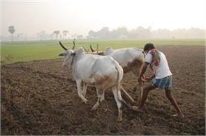 about 13 lakh farmers are included in prime minister  s crop insurance scheme